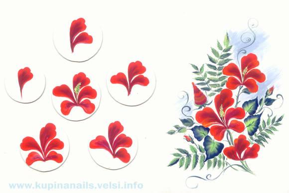 Очень ярким акцентом в дизайне ногтей может быть красный гибискус или китайская роза. Как рисовать на ногтях гибискус.